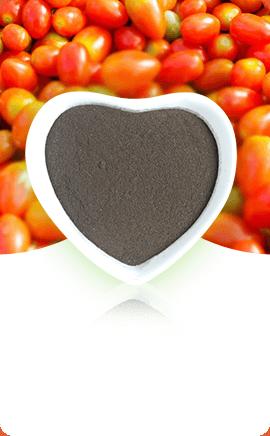 Organic Fertilizers